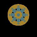 YDS logo.png