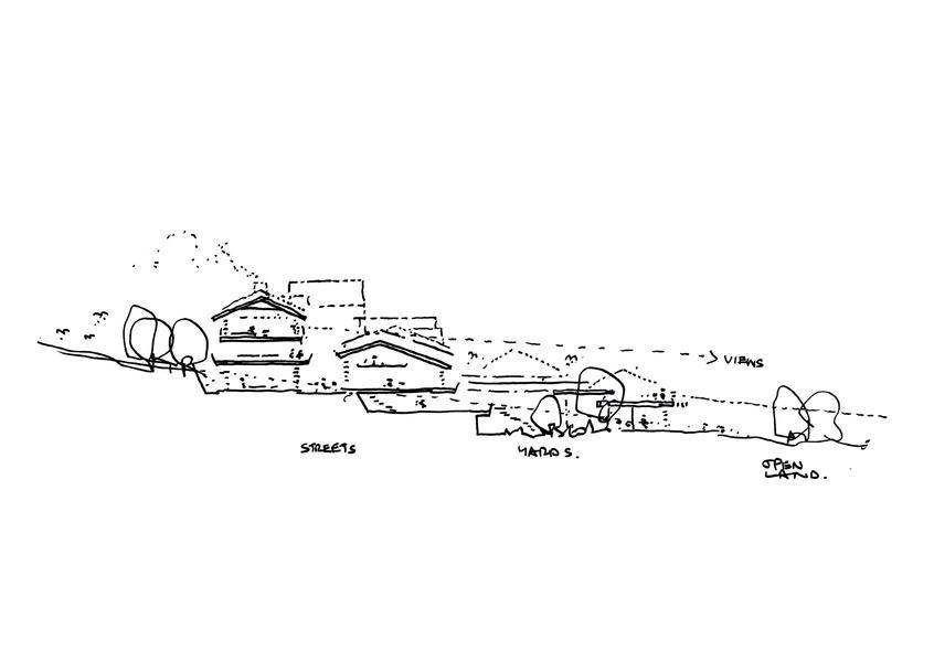YLVT Sketch.jpg
