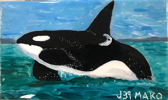 J39 Mako Male born to J11 (Blossom), her fourth calf, Spring, 2003