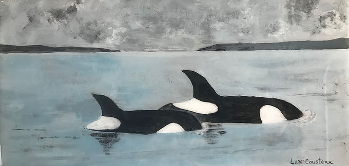 L113 Cousteau born to L94 (Calypso), her first calf, October, 2009 L-113 Cousteau was born in 2009 and named after the famous marine conservationist, inventor and photographer, Jacques Cousteau. Her mother Calypso (L94), was born in 1995, named after Jacques Cousteau's research ship. Cousteau (L-113) is a member of the L-12 matriline, being cared for by her great-grandmother Alexis (L-12), her famous uncle Mega (L-41), and her auntie Matia (L-77)