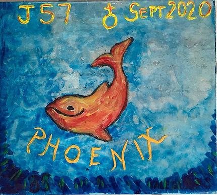 J57 Phoenix's name represents that which can overcome the odds.  He was born September 2020.  It was known that his mother, Tahlequah (J-35) was pregnant but, because she had lost her previous calf in 2018, there was concern that J-57 would not survive. In spite of all the odds, he did and has continued to thrive.  He joins his brother, Notch (J-47), who is a very attentive big brother. He is precocious, swimming vigorously alongside its mother.