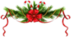 Christmas_Pine_Branches_Decoration_PNG_C