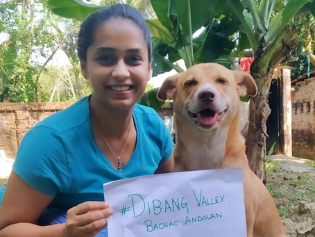 Updates of the Dibang Valley Bacaho Andolan | The way forward