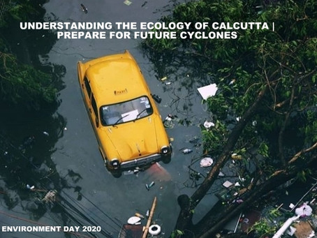 Understanding the Ecology of Calcutta | Prepare for future cyclones