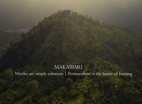 Makaibari: Miracles are Simple Solutions | Permaculture is the future of Farming