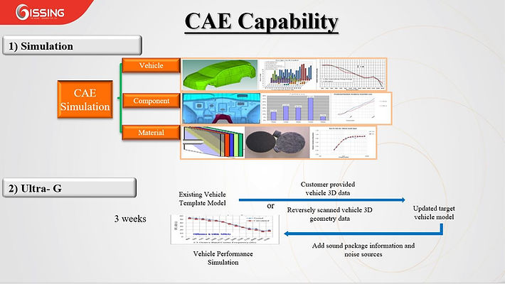 gissing_cae_capability.JPG