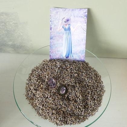 Lavendel blau - Provence