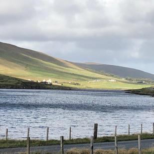 Garne aus Shetland