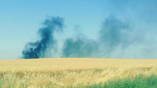 שריפה מבלון תבערה בעוטף עזה