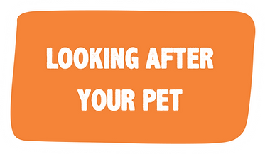 lookingafteryourpet.png