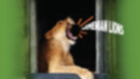 LionButton4.png