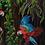 Thumbnail: Rainforest Retreat