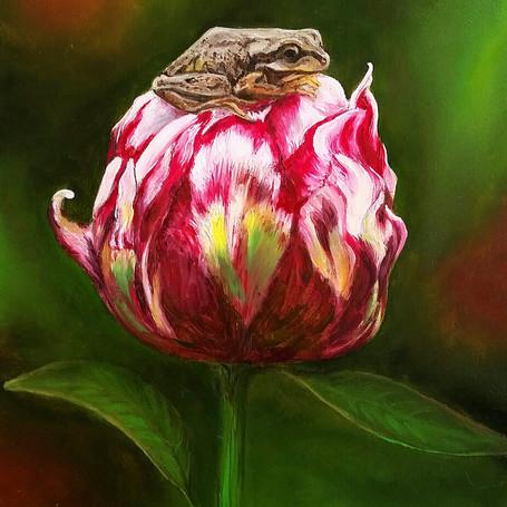 Frog Peony