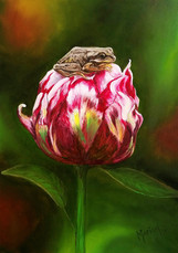 COMMISSION - Frog Peony