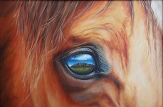 SOLD - Bazil's Reflection