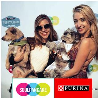 Puppypalooza for Purina