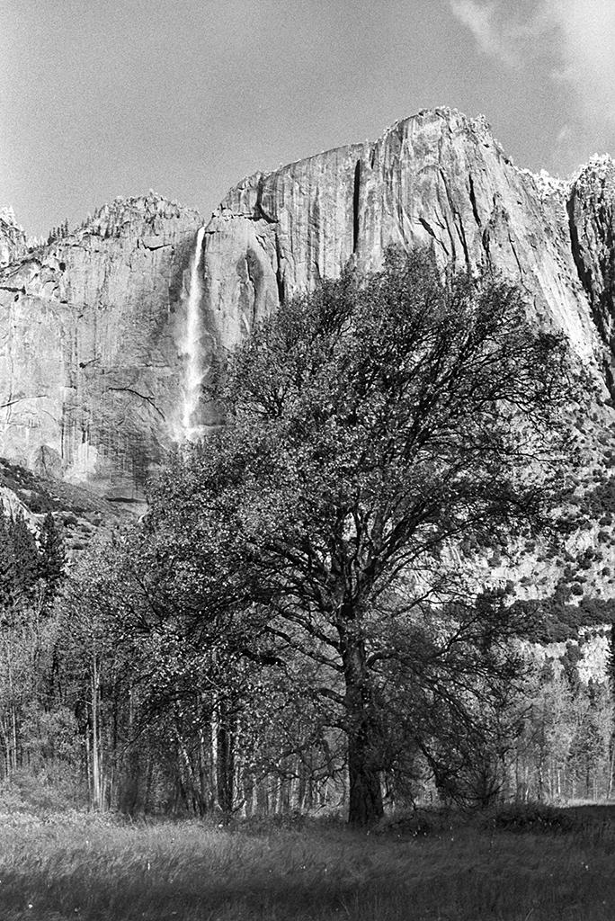 Yosemiten