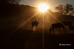 Namibia_xxx_02