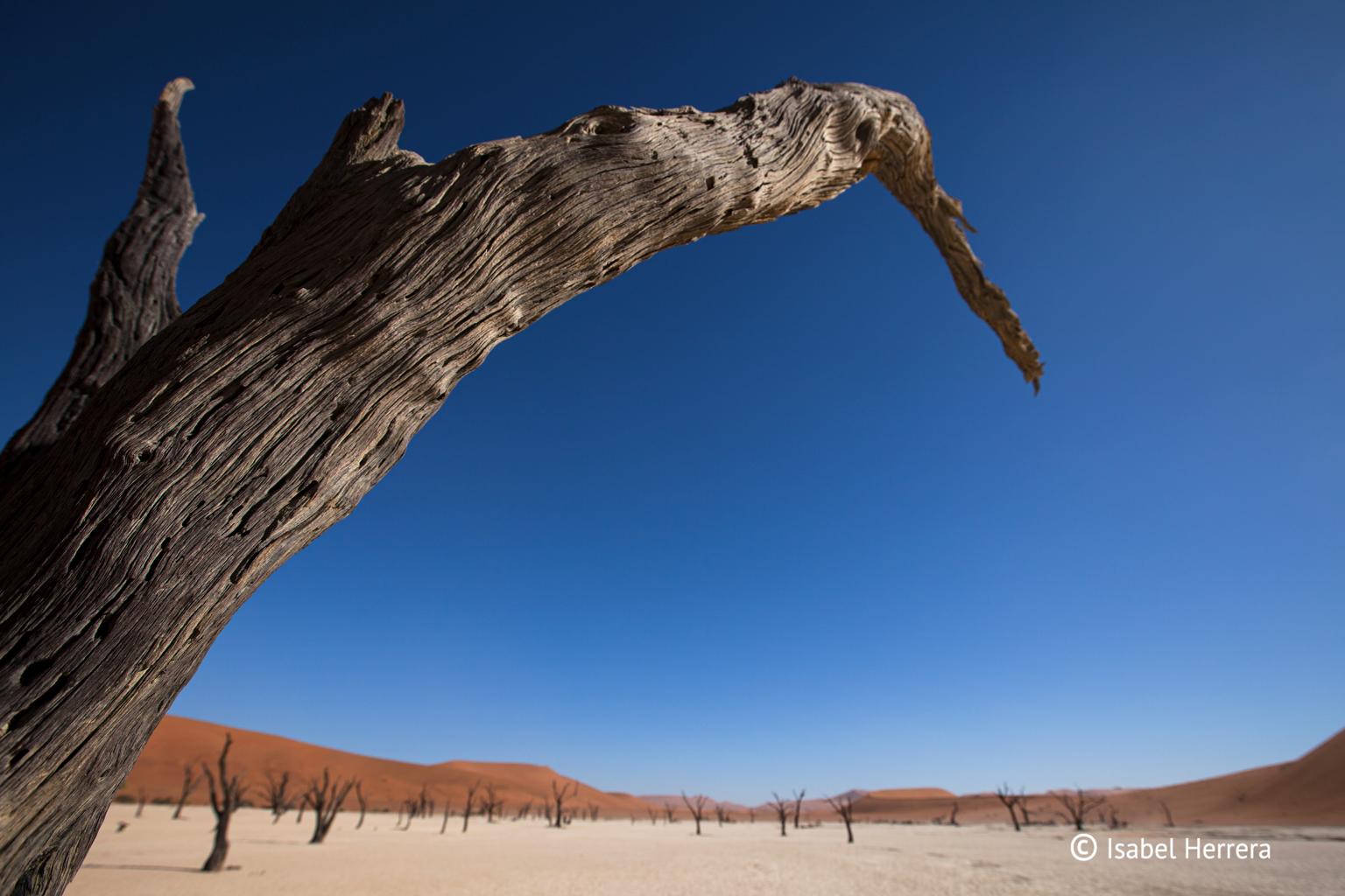 Namibia_xxx_04