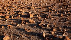 Namibia_xxx_10
