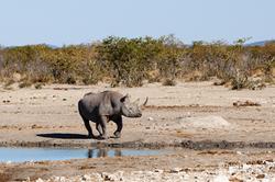 Namibia_xxx_08