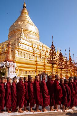 Bagan_Shwezigon_Pagode