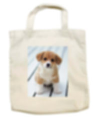 printed long life bags cardiff.jpg