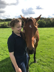 Horse Physio Physiotherapy Hampshire