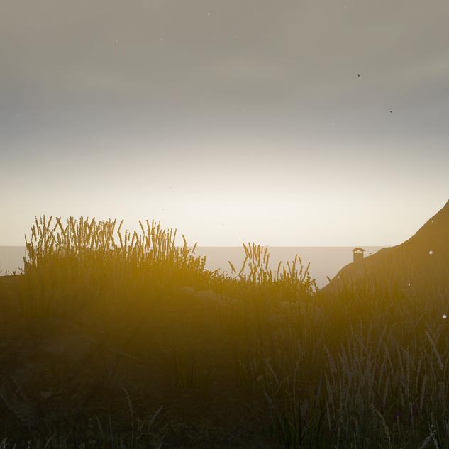Dawn in Valley