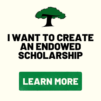 i want to create an endowed scholarship.