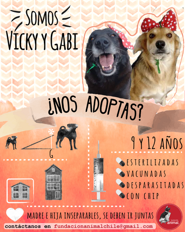 Vicky y Gaby.png