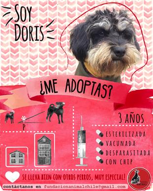 Doris.png