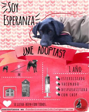 ESPERANZA.png