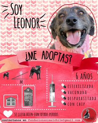 Leonor.png