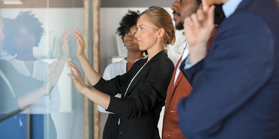 Preparing for a successful programme & 10 Common Risks