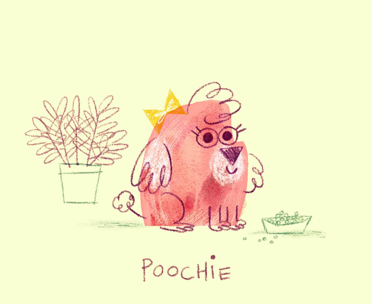POOCHIE