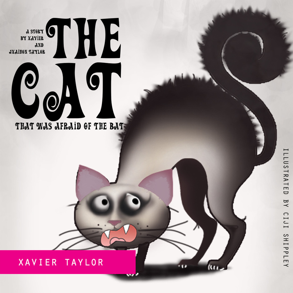 Xavier Taylor book illustration