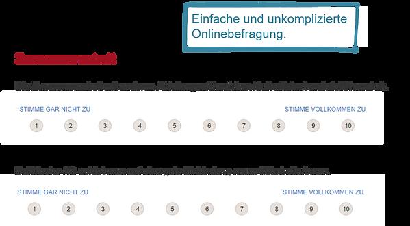 Puls-Check-Onlinebefragung.png