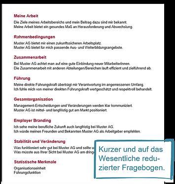 Puls-Check-Fragebogen.png