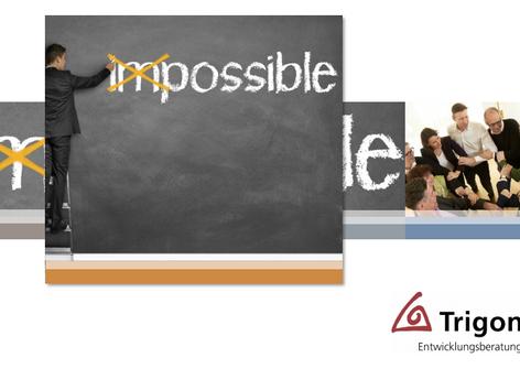 Trigon Themen: Handlungskompetenz Innovation