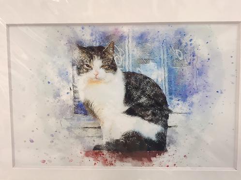 LISI   PRINT - window sill cat