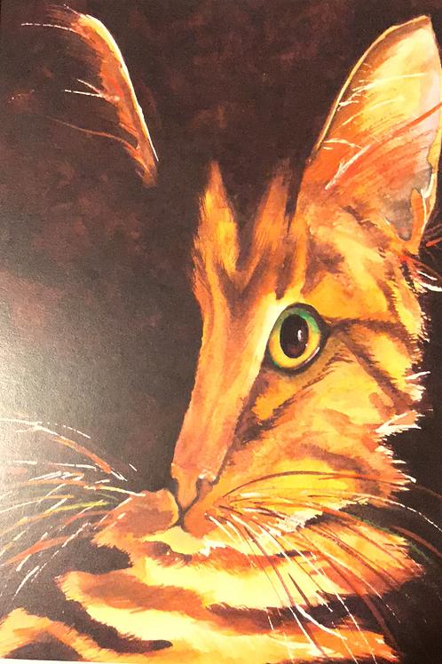 """""""CASSANOVA"""" Watercolor by Shery Polansky"""