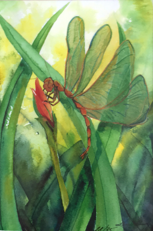 """ORANGE DRAGONFLY"" Watercolor"