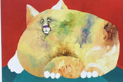 whimsical cat, whimsy cat, humor in cat