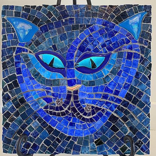 blue cat, mosaic blue cat, cheek cat