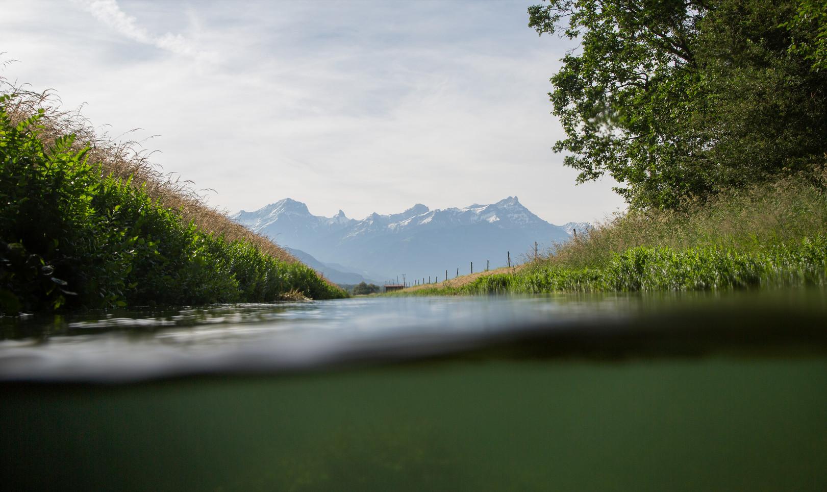 Ha Eul, Amphibious Eye Project 2014 Montreux _06