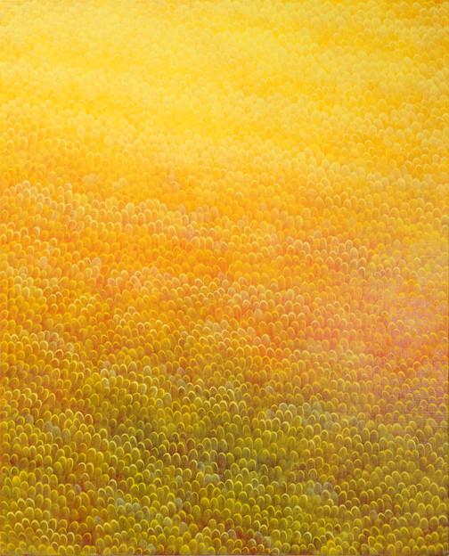 Yoon Gyeom, yellow field 2018 oil on canvas 53 x 65.