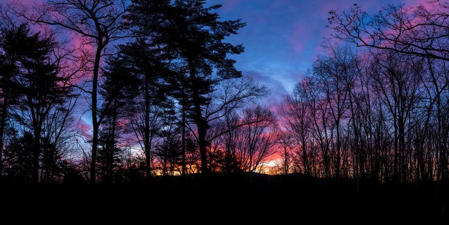 - Sunrise Silhouette -