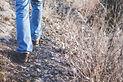 hiking-1149985_1920.jpg