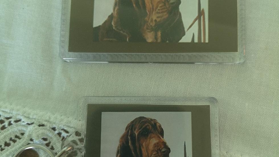 Bloodhound Magnet and Keyring Set
